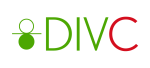 DIV Consulting